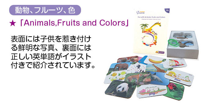 フラッシュカード2 Animals,Fruits and Color