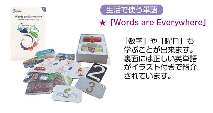 フラッシュカード3 Words and Everywhere